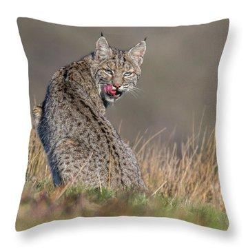 Estero Loner  Throw Pillow