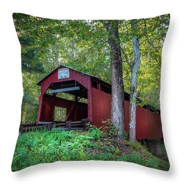 Esther Furnace Bridge Throw Pillow