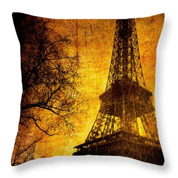 Esthetic Luster Throw Pillow