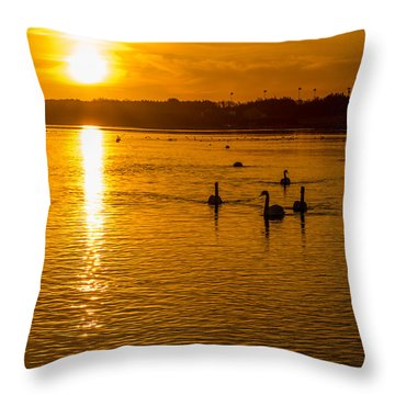Estuary Sunset Throw Pillow