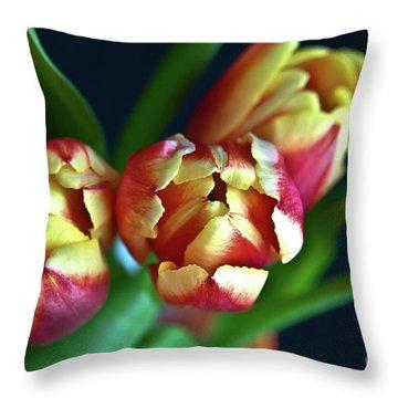 Eternal Sound Of Spring Throw Pillow