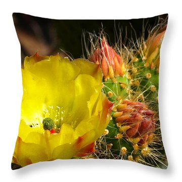 Silks Among Needles Throw Pillow