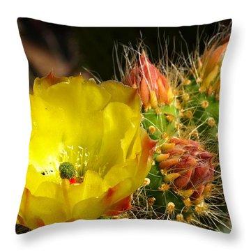 Silks Among Needles Throw Pillow