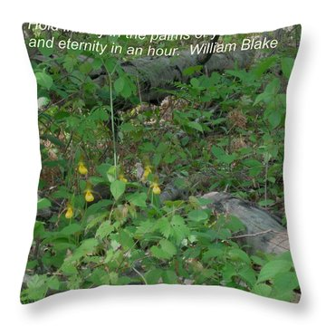 Eternity In An Hour Throw Pillow
