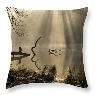 Throw Pillow featuring the photograph Ethereal - D009972 by Daniel Dempster