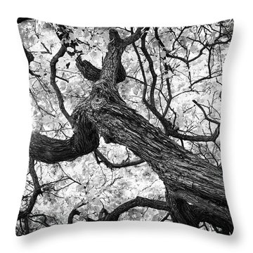 Ethereal Maple Throw Pillow