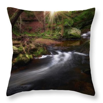 Throw Pillow featuring the photograph Ethereal Morning 2017 by Bill Wakeley