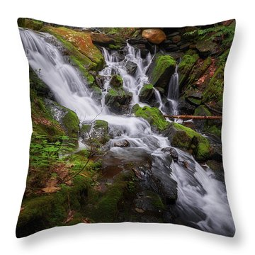 Throw Pillow featuring the photograph Ethereal Solitude by Bill Wakeley