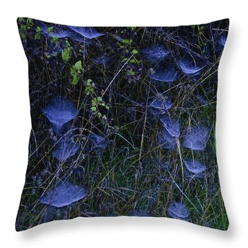 Spider Webs Throw Pillow by Sherri Meyer