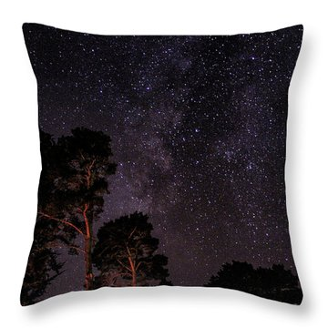 Eucalyptus Galaxy Throw Pillow