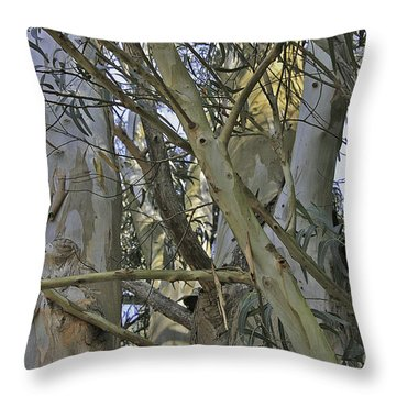 Eucalyptus Study Throw Pillow