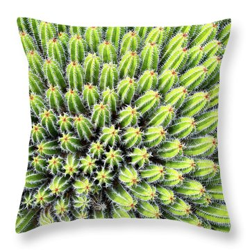 Euphorbia Throw Pillow by Delphimages Photo Creations