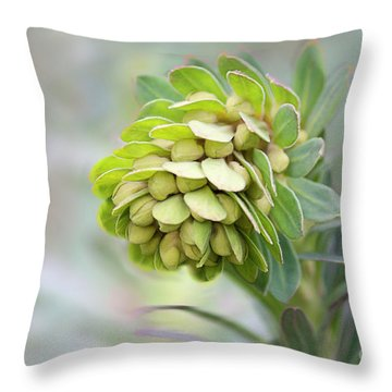 Throw Pillow featuring the photograph Euphorbia by Linda Lees