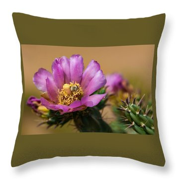 Euphoria Throw Pillow by Carolyn Dalessandro