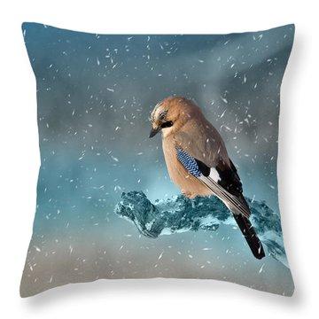 Eurasian Jay Throw Pillow by Ericamaxine Price