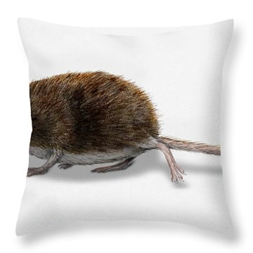 Throw Pillow featuring the painting Eurasian Pygmy Shrew - Sorex Minutus - Musaraigne Pygmee - Musar by Urft Valley Art
