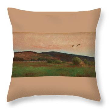 Eurasian Woodcocks Throw Pillow