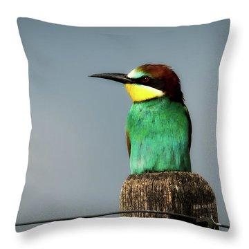 Throw Pillow featuring the photograph European Bee Eater by Wolfgang Vogt