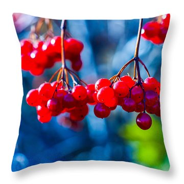Throw Pillow featuring the photograph European Cranberry Berries by Alexander Senin