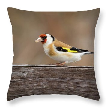 Throw Pillow featuring the photograph European Goldfinch In Kenosha by Ricky L Jones