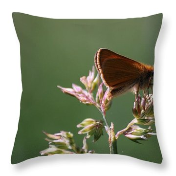 European Skipper Throw Pillow