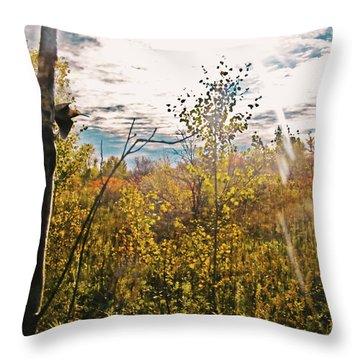 Evanescent Dreams Of Autumn Throw Pillow