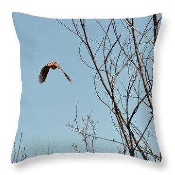 Evanescent Queen Of Upland Birds Throw Pillow