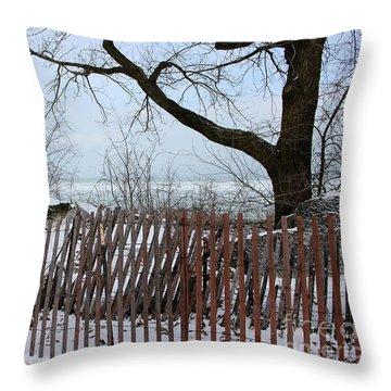 Evanston Winter Throw Pillow
