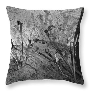Throw Pillow featuring the photograph Even The Shadows Dance by Mary Sullivan