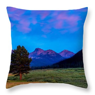 Evening At Christmas Meadows Throw Pillow
