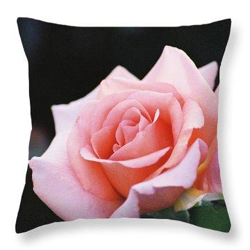 Evening Beauty Throw Pillow by Frank Larkin