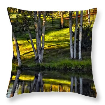 Evening Birches Throw Pillow by Steve Harrington