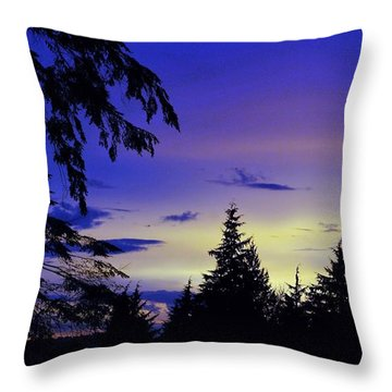 Evening Blue Throw Pillow