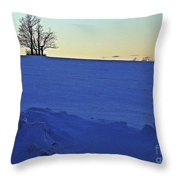 Throw Pillow featuring the photograph Evening Calm by Christian Mattison