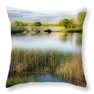 Evening Calm Throw Pillow by Teresa Zieba