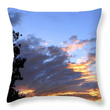 Evening Color Throw Pillow by Will Borden