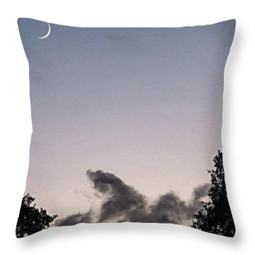 #evening Dog Walking Has Its Throw Pillow