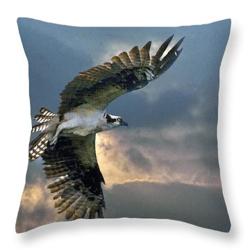 Evening Flight Throw Pillow by Brian Tarr