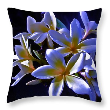 Evening Glow Throw Pillow by Gwyn Newcombe