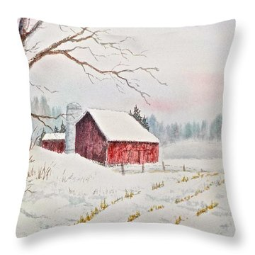 Evening Hush Throw Pillow
