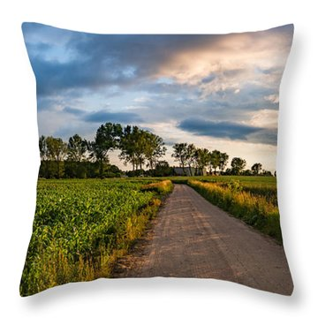 Throw Pillow featuring the photograph Evening In A Cornfield by Dmytro Korol
