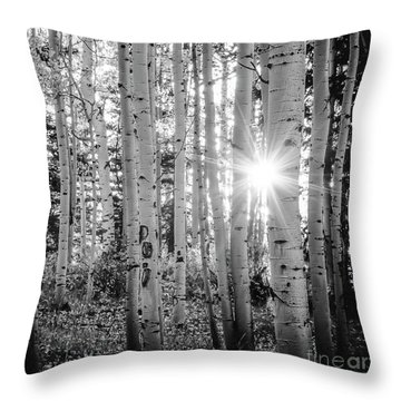 Throw Pillow featuring the photograph Evening In An Aspen Woods Bw by The Forests Edge Photography - Diane Sandoval