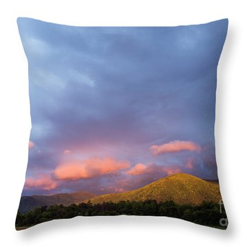 Throw Pillow featuring the photograph Evening In Cades Cove - D009913 by Daniel Dempster