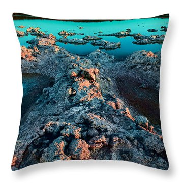 Throw Pillow featuring the photograph Evening In Lake Walyungup by Julian Cook