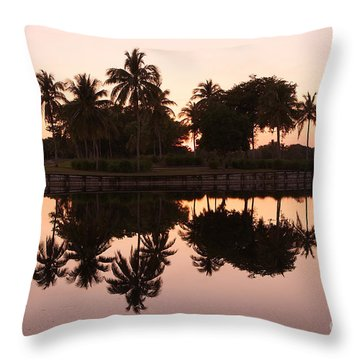 Evening In Pink Throw Pillow