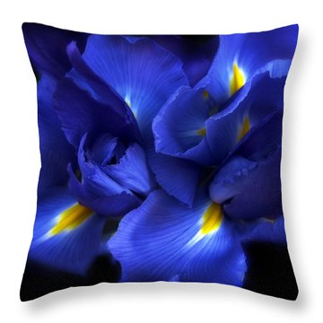 Evening Iris Throw Pillow by Jessica Jenney