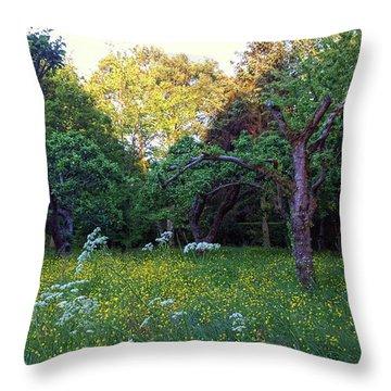 Throw Pillow featuring the photograph Evening Light by Anne Kotan