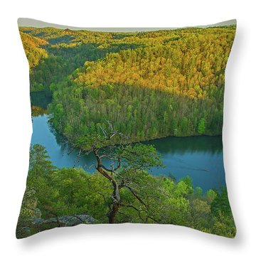 Evening Light In The Hills. Throw Pillow by Ulrich Burkhalter