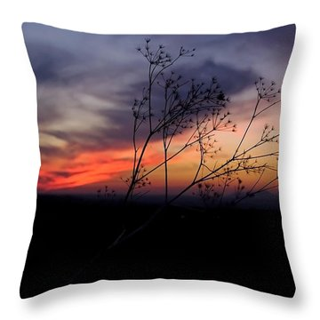 Evening Light Over Meadow Throw Pillow