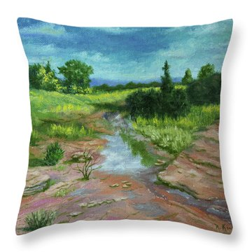 Evening Light Throw Pillow by Roena King